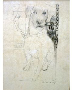 Paul de Lussanet, Hond, tekening, 1971