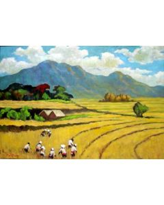 J.L.Geldtmeijer, een rijstveld