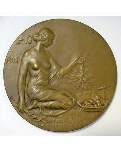 Penning van de Nederlands-Belgische Vereniging van Vrienden van de Penningkunst: Travaux de Bruxelles-Port de Mer, 1909