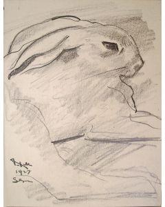 Willem van Konijnenburg, Jonge haas, tekening, 1927
